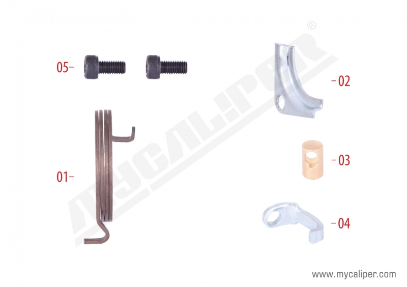 Caliper Spring & Retainers Repair Kit (Right)